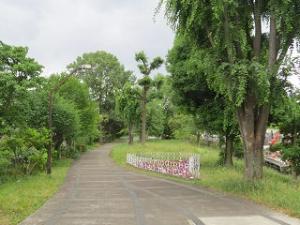 Ajisai-01