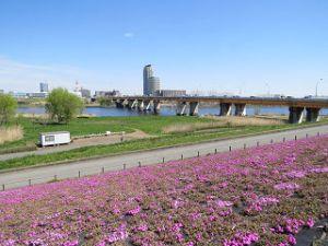 Arakawa-001_1