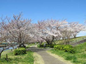 Arakawa-004_1