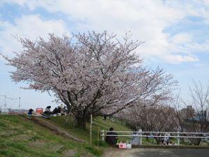 Arakawa-04