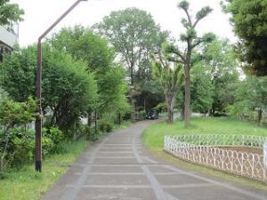Ryokudo-park-001
