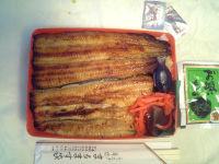 Marumasu05