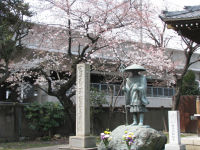 Arakawa28