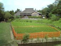Ryoku03