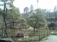 Ookuma01