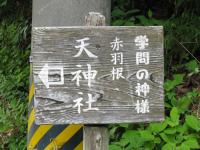 Aichi10