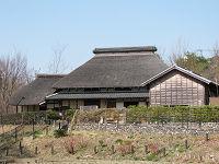 Akabanedai07