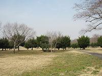 Akigase06