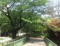 Nature21_2