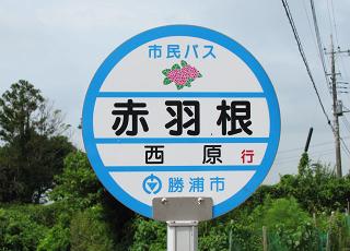 Katsuura02