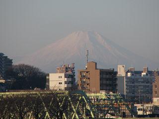 Fuji1401