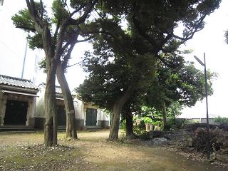 Hachiman17