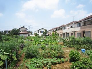 Matsudo01