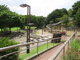 Shimizu54