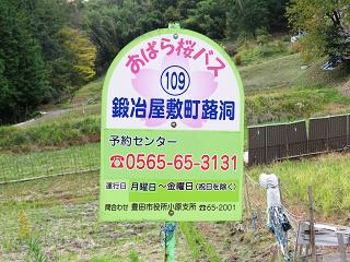 Toyoda13