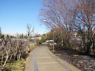 Ryoku15021003