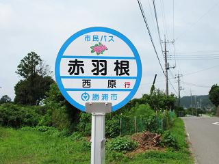 Katsuura201302_2