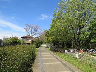 Midori_04