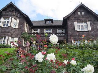 Rose_garden_005