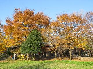 Nature_park_03