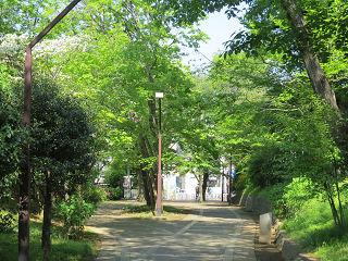 Midori_park_01