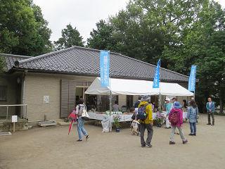 Sasiogi_hikawa_017