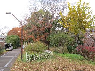 Ryoukudo_park_04