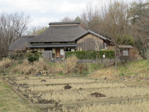 Akabane-nature-park-01