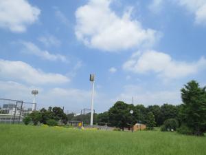 Akabane-nature-park-08