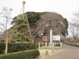 Akayama-02