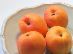 Apricot-01_20210708123001