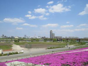 Arakawa-002_20200412092301