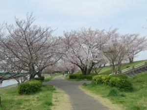 Arakawa-01_20200327111701