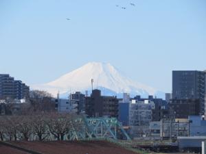 Arakawa-02_20200201131801