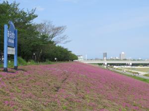 Arakawa-02_20200505102601