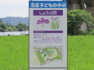 Arakawa-02_20210601113701