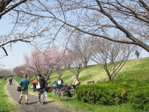 Arakawa-03_20200322184401