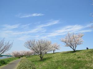 Arakawa-03_20200403133401