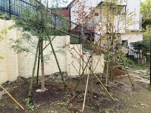 Garden-cote-01_20201113204001