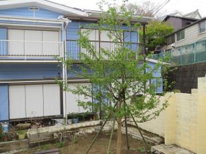 Garden-cote-02_20200331103901