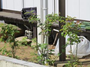 Garden-cote-02_20200411140901