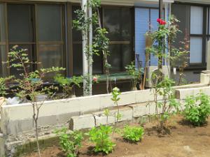 Garden-cote-02_20200528164001