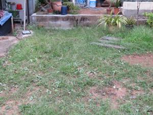 Garden-cote-02_20200901163901