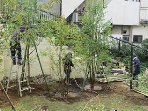 Garden-cote-02_20201004180201