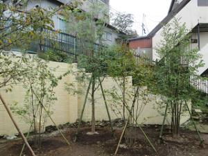Garden-cote-02_20201012121601