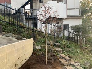 Garden-cote-02_20201113204001