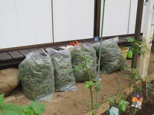 Garden-cote-03_20200901163901