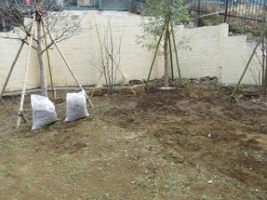 Garden-cote-03_20210105164901