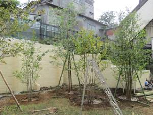 Garden-cote-04_20201004180201