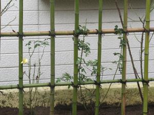 Garden-cote-05_20201012121501